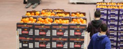 Νέα διανομή  πορτοκαλιών σε δικαιούχους του Δ. Τρικκαίων